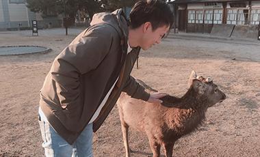 【大工の日常】日向ハウス社員のゆるゆるな時間 小窪くん 奈良公園で鹿とプリン